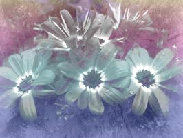 Flower Texture 23 by dknucklesstock
