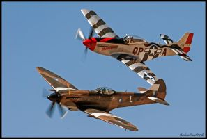Fast Friends by AirshowDave