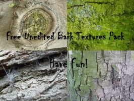 Unedited Bark Texture Pack by IdunaHaya-Stock