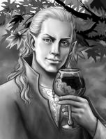 Elven King by SargeCrys