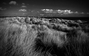 the dunes by awjay