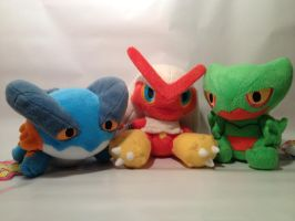 Pokemon Three Final Evolution Starters Pokedolls by KaguraMutsuki