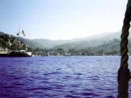 Avalon, Catalina by Fritters