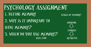 PI Psychology Assignment 1 by kast43
