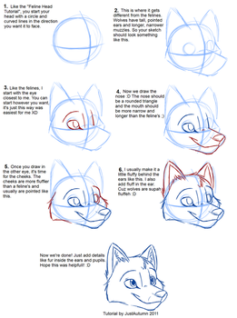 How to Draw Canines: Head by JustAutumn