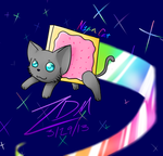 Nyan Cat by xAuraSolarisx