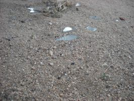 .:Smashed Glass:. by Iceelace