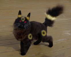 Murre the Umbreon by ToygerCat