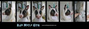 Blue Merle Kirin (corgi/unicorn/koi) by stuffedpanda-cosplay