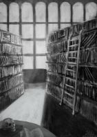 The library by JaiZub