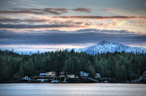 Rural Alaskan Neighborhood by Muskeg