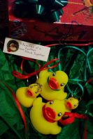 Xmas Duckies-pho by NeptuneButterfly