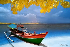 Colorful boat by hirza
