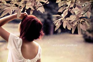 because i will never forget by C4M30