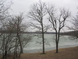 Trees and Lake 3 by r-a-i-n-y