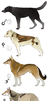 Dog Adoptables CLOSED by DikkeBobby