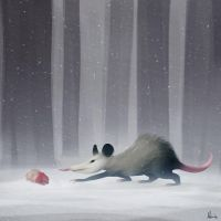Opossum by Mirix