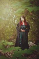 .: in the forest of wonders :. by Dream--Eater