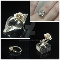 Rose in blossom ring by WallaceReg