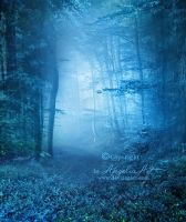Blue Forest by AngeliaArt