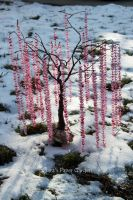 The tree of 1000 cranes by cridiana