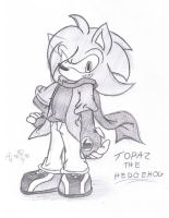 Topaz the Hedgehog by AR-ameth