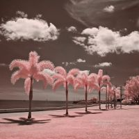 Cotton Candy Beaches by La-Vita-a-Bella