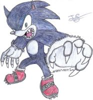 WereSonic by swimmer2000338