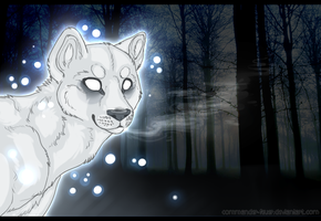 Wandering Spirit by Sector-C13