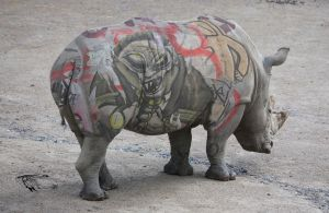 Rhino Graffiti by Dany-Art