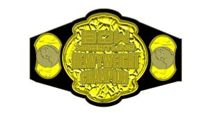 BOW Heavyweight Championship belt 2013 by RWhitney75