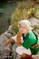 Link. Again. by L-Maverick