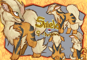 Arcanine Reference by FeathersAndInk