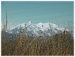Illimani HDR by zentenophotography