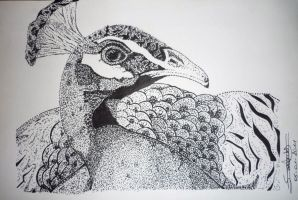 Peacock pointillism by Serenavdd