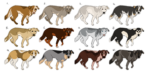 NEW CANINE ADOPTABLES by FreeToGoodHome