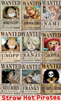 Straw Hat Pirates Wanted Posters by sakura1920