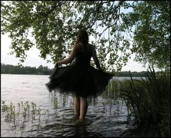 Black Swan IV by Eirian-stock