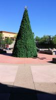 Superstition Springs Mall Outdoor Chrismas Tree by BigMac1212