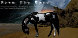 Down The Road My Entry 1 by Paco-Taco14