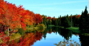 Fall Reflections.Complete by Brian-B-Photography