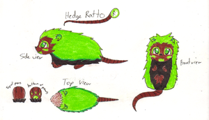 Hedge Ratto by Ultralee0