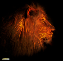 Lion Portrait in Fractalius by Nini1965