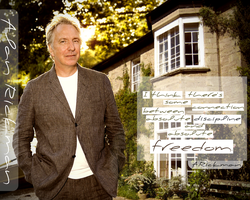 Alan Rickman - wallpaper 9 by transparentbird