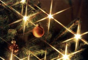 Christmas Tree by Siril