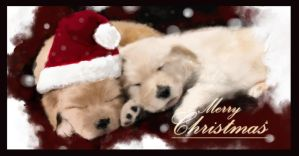 Christmas pups by johnsonting