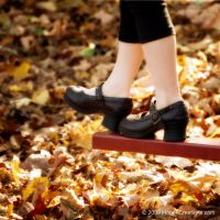 Autumn Play by choose2bgr8
