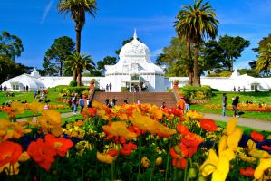 The Conservatory of Flowers by rafaelmcsilveira