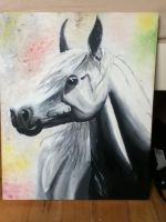 black and white painting.. by ashleighh9136