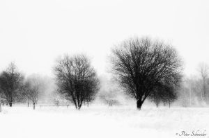Winter story. by Phototubby